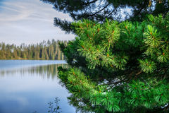 Mountain lake in High Tatra Stock Photography