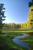Mountain Lake In Springtime Stock Photography