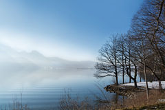 Free Mountain Lake In Winter With Bare Trees Stock Images - 50256464