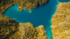Mountain lake Kayangan on a tropical island, Philippines, Coron, Palawan. Aerial view:Mountain Kayangan lake,on a tropical island with blue water. Lake in the stock footage