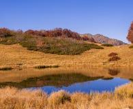 Mountain lake in Krasnaya Polyana, wildness Stock Photography