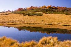 Mountain lake in Krasnaya Polyana, wildness Stock Images
