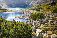 Mountain lake in 5 lakes valley in Tatra Mountains Royalty Free Stock Image