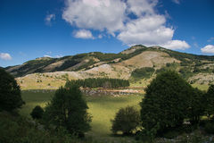 Mountain lake with livestock in Lazio Royalty Free Stock Images