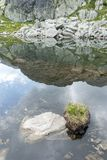 Mountain lake mirror, reflecting the clear blue sky. In Retezat, Romania Stock Photo