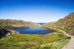 Mountain lake in the North. Moss-covered hills, and stunted vege Royalty Free Stock Photos