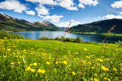 Mountain lake in Norway Royalty Free Stock Images
