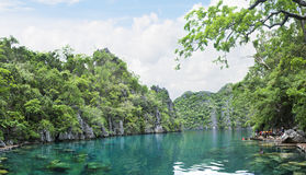 Mountain Lake, Palawan Philippines. Picture of green water of Kayangan lake, Palawan, Philippines royalty free stock photos