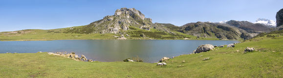 Mountain and lake (panoramic). Mountain and lake of the region Asturias in Spain (panoramic Royalty Free Stock Image