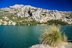 Mountain lake Panta de Gorg Blau Stock Photos