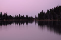Mountain lake and pine trees Stock Photo