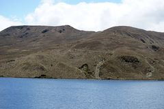 Mountain lake in the Antisana Ecological Reserve, Ecuador Royalty Free Stock Photography