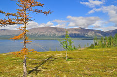 Mountain lake on the Putorana plateau. stock photos