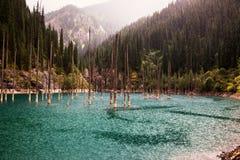 Mountain lake and rain Stock Photography