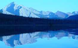 Mountain lake reflection. Majestic range of mountains and forest Royalty Free Stock Photos