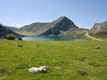 Mountain, lake and road. Of the region Asturias in Spain Stock Photography