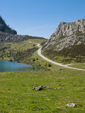 Mountain, lake and road. Of the region Asturias in Spain Royalty Free Stock Photography