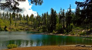 Mountain Lake. Scout Lake near Sisters, OR royalty free stock image