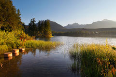 Mountain Lake in Slovakia Tatra Stock Image