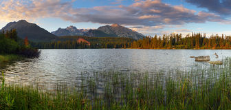Mountain Lake in Slovakia Tatra - Strbske Pleso Royalty Free Stock Images