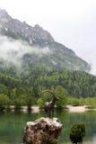 Mountain lake in Slovenia Royalty Free Stock Photography