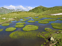 Mountain lake with small floating islands covered with grass Stock Photos