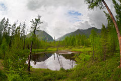 Mountain lake somewhere in Sayan Mountains. Fish eye photo of small mountain lake somewhere in Sayan Mountains. Summer, cloudy weather royalty free stock image