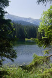 Mountain lake in the summer Royalty Free Stock Images