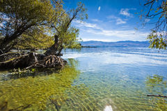 Mountain Lake in Summer Royalty Free Stock Photo