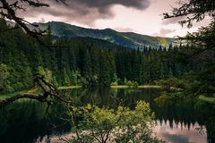 Mountain lake during summer surrounded by hills and trees Royalty Free Stock Photo
