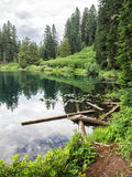 Mountain lake in the summer Royalty Free Stock Photo