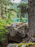 Mountain lake in the summer Royalty Free Stock Photos