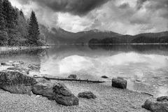 Mountain  lake before sunset.Old tree fallen into water. Royalty Free Stock Images