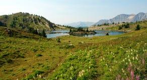 Mountain lake in sunshine meadows stock photos