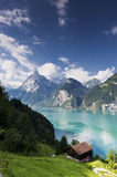 Mountain lake in Switzerland. In portrait mode Royalty Free Stock Images