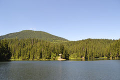 Mountain lake. Synevyr, Ukraine. mountains with pine-trees between sky and water Stock Photography