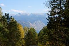Mountain lake. Teletskoye in Altai Royalty Free Stock Image