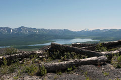 Mountain lake. The Toppled trees. Royalty Free Stock Photography