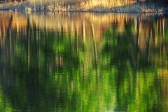 Mountain lake, tree reflection Royalty Free Stock Images