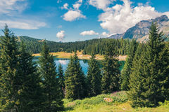 Mountain lake and trees in a sunny day. Mountain lake and trees in sunny day Stock Photography
