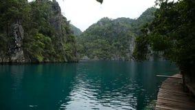 Mountain lake on a tropical island stock video footage