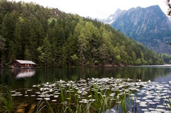 Mountain Lake View. A view over the mountain lake with a 3000meter mountain in the background Stock Photos