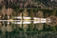 Mountain lake Vorderer Langbathsee in Salzkammergut, Upper Austr. Forest Reflection and Lake House at the  Langbathsee in Austria Stock Photography