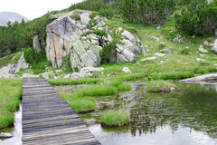 Mountain Lake with a Walking Path. Wooden walking path above a mountain lake. Huge rock and coniferous plants in the background Stock Photography