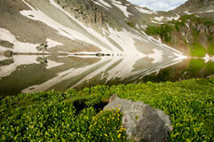 Mountain lake and water reflections. Melting snow, wildflowers, and water reflections royalty free stock photos