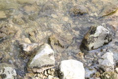 Mountain Lake, Water and stones Royalty Free Stock Image