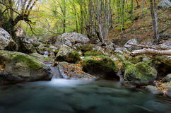 Mountain lake waterfall in deep forest Stock Images