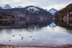 Mountain lake in winter. Germany Royalty Free Stock Photo