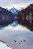 Mountain lake in winter Stock Image