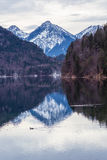 Mountain lake in winter. Germany Royalty Free Stock Images